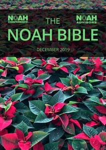 NOAH Market Report - Bible - December2019