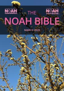 NOAH Market Report - Bible - March 2020