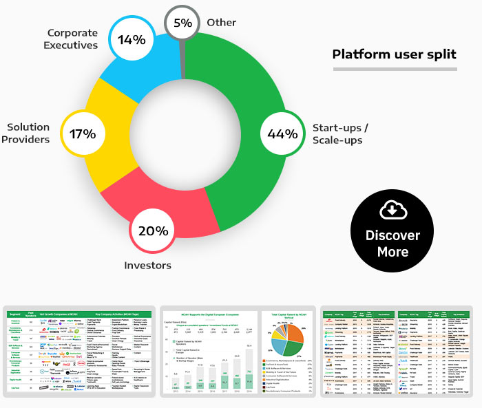 NOAH Digital - Platform user split